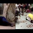 by Fatoumata Tioye Coulibaly & Konrad Waldmann – Screenshot